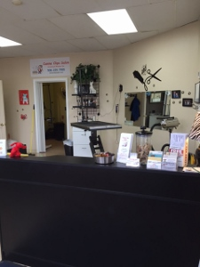 Canine clips salon cage free express service for every dog announcing all day stay now for Action clips grooming salon