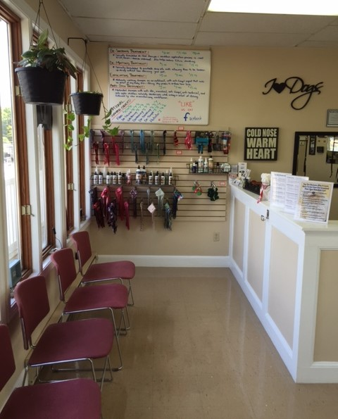Southborough dog grooming